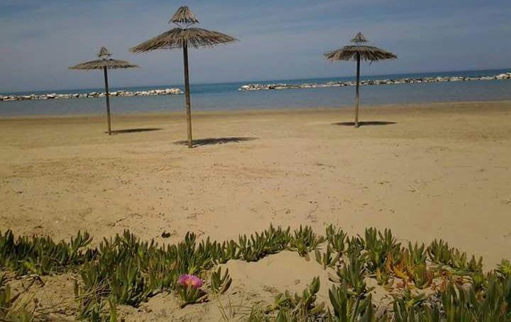 con-fiore-playa-del-sol.jpg